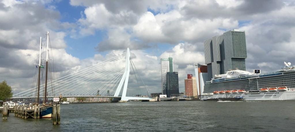 Zicht op Rotterdam Erasmus brug